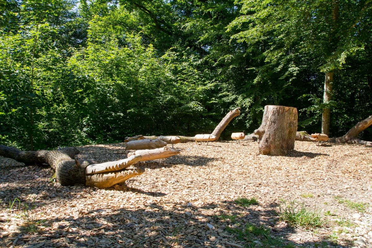 Wald-Klassenzimmer